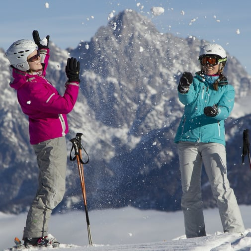 Skiservice nach Majestic Art