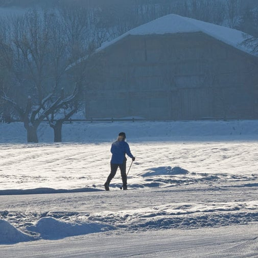 Cross-Country Skiing in the Beautiful Outdoors