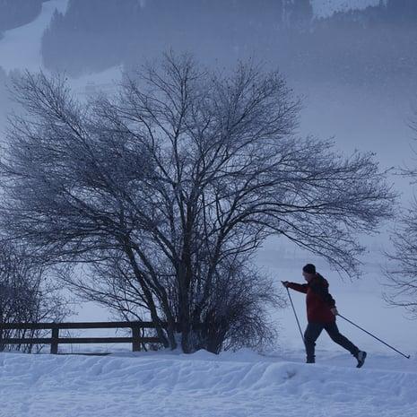 Vacanza invernale